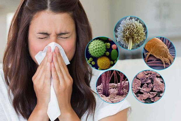 Клещи в подушках симптомы