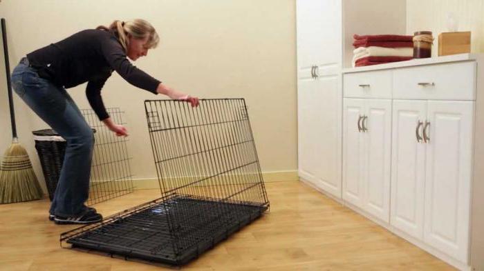 клетки для маленьких собак в квартиру