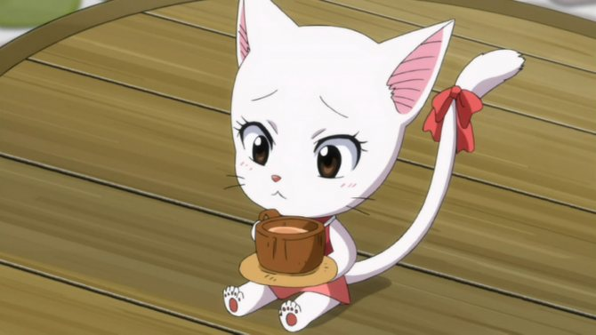 Клички по японски для кошек