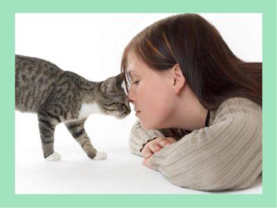 когда кошка зазывает брачного партнера