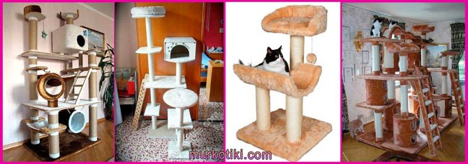 комплексы для котов