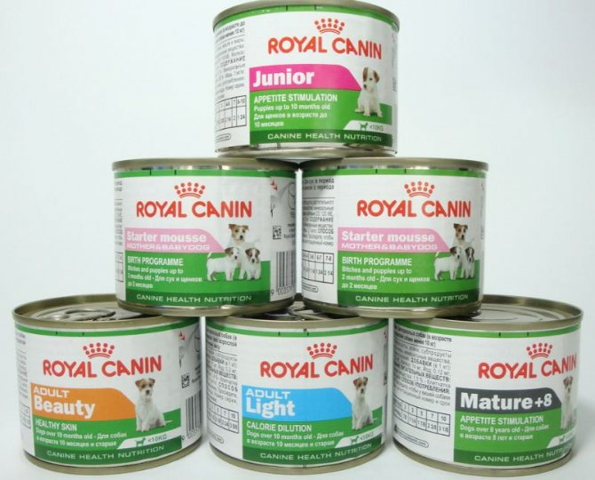 Консервы Royal Canin