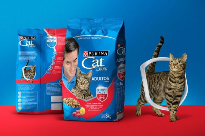 Корм для кошек Кет Чау