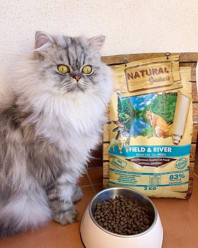 Корм для кошек Natural Greatness: отзывы и разбор состава
