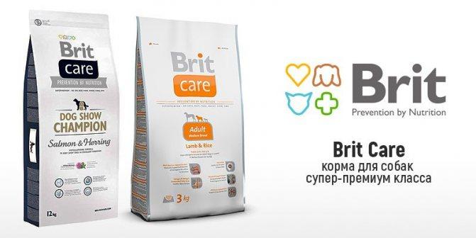 Корм для собак Brit Care обзор