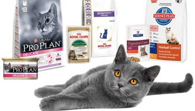 корм для стерилизованной кошки