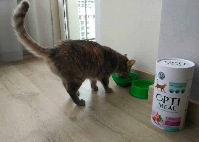 корм оптимил для кошек