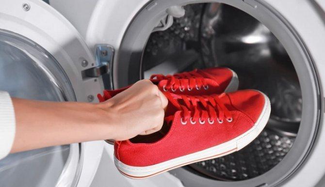 Кошка пометила обувь: как избавиться от запаха