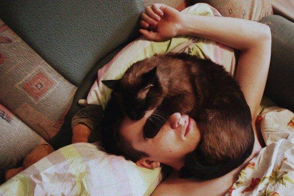 Кошка спит на лице мужчины