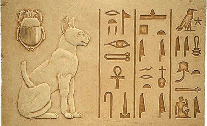 Кошки в Египте