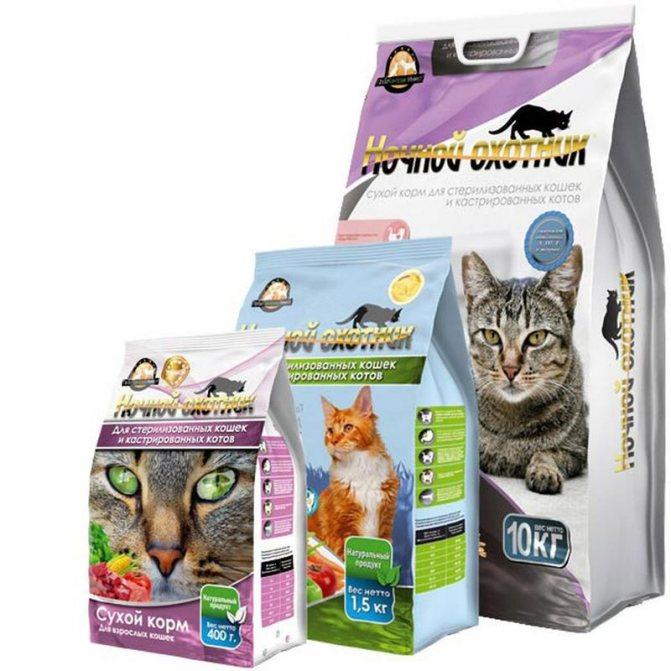 Кот после кастрации не ест и не пьет Почему кот после кастрации не ест