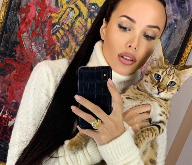 Коты Решетовой и Тимати