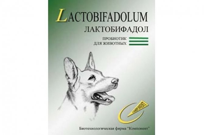 Лактобифадол для собак