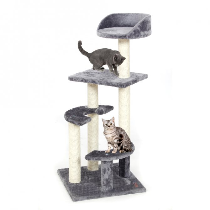 Лазалка для кошки