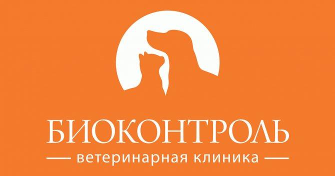 """'Лимфома у собак - причины, прогнозы, лечение опухолей у собак в Москве. Ветеринарная клиника """"Зоостатус""""'"""