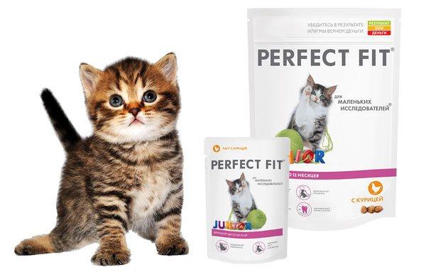 Линейка кормов для кошек Перфект Фит