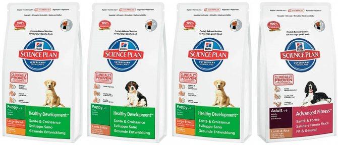 Линейка кормов для собак