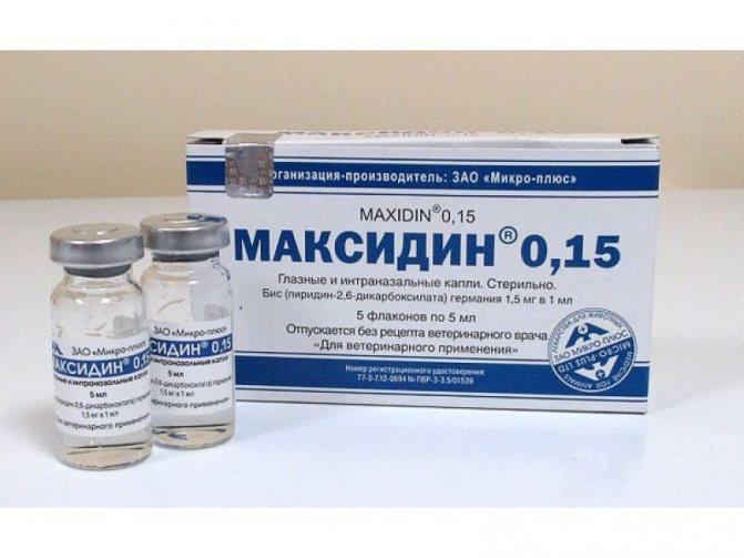Максидин представляет собой прозрачный стерильный раствор в стеклянных флаконах по 5 мл
