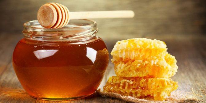 мед для собак