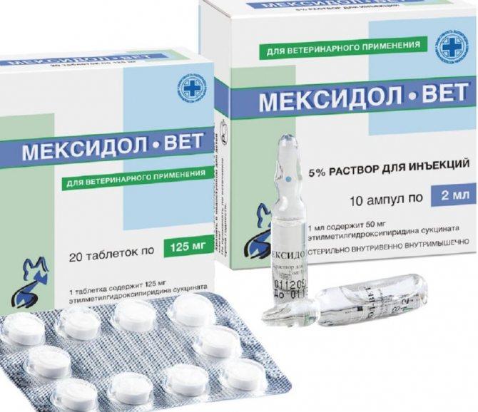 Мексидол вет может применяться для широкого спектра заболеваний