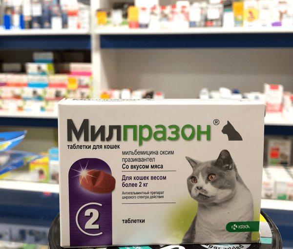 милпразон в аптеке
