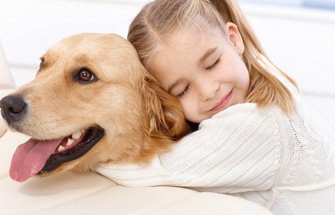 На момент лечения собака не должна контактировать с детьми