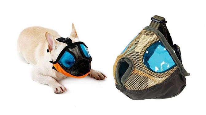 Намордник для мопса Petneces Dog Muzzle for Barking-Puppy Mask for Bathing