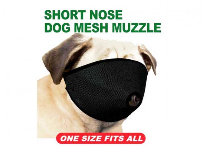 Намордник Pro Guard Mesh Dog Muzzle for Short Nose