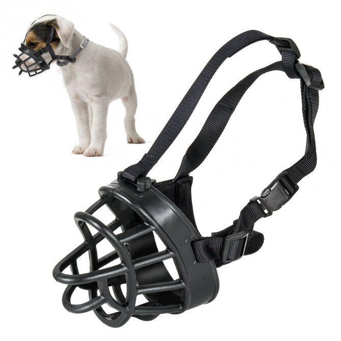 Недорогой намордник для собаки