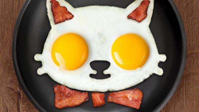 Нельзя давать коту жареное яйцо