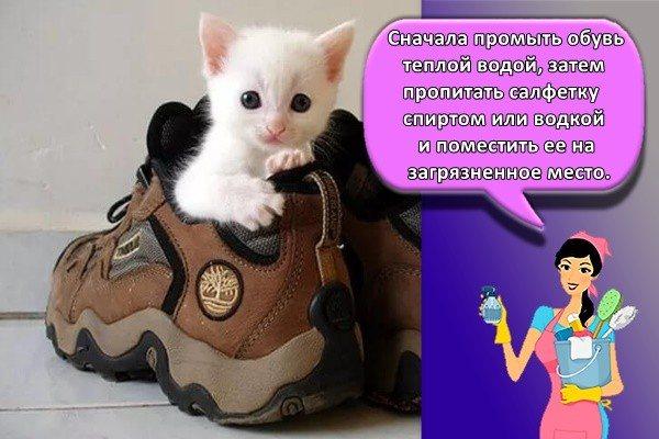 нужно сначала промыть обувь теплой водой, затем пропитать салфетку спиртом или водкой и поместить ее на загрязненное место.