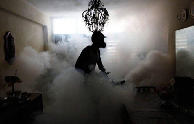 Обработка помещения холодным туманом против насекомых