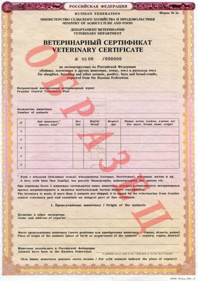 Образец международного ветеринарного сертификата