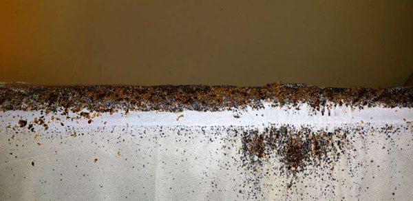 Обычно настолько зараженные матрасы нужно выбрасывать - отмыть их от экскрементов клопов невозможно.