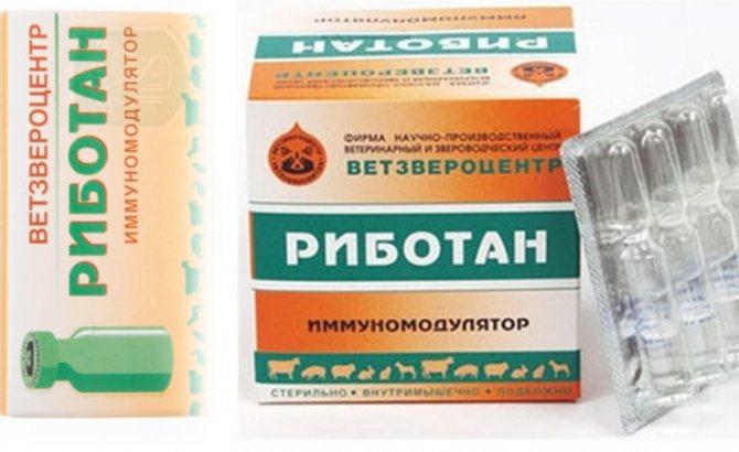 Описание препарата Риботан