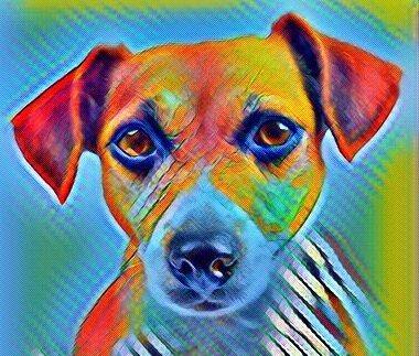 Острые гепатопатии у собак