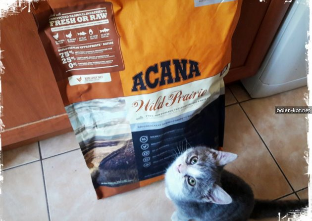 отличный корм для кошки по недорогой цене