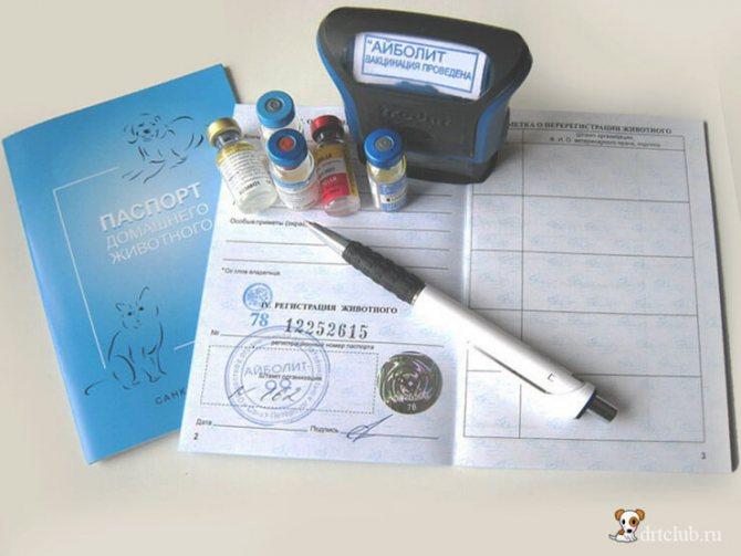 Паспорт животного и вакцины