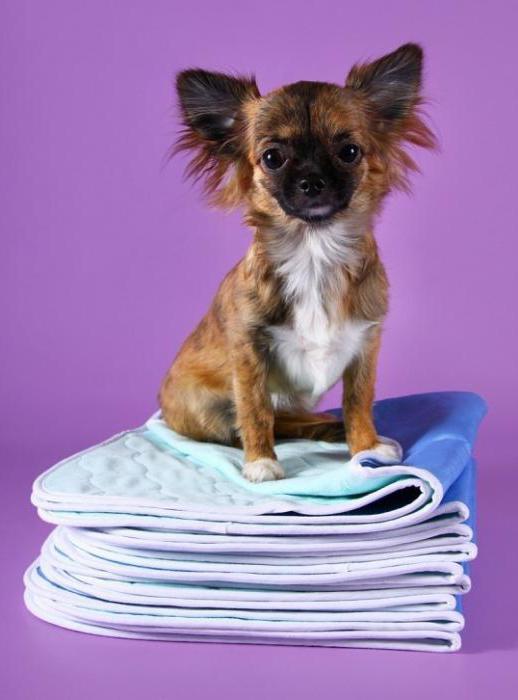 пеленка для собаки своими руками