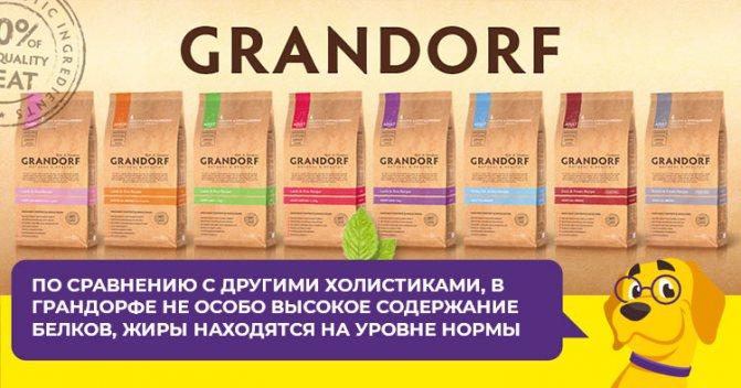 Плюсы и минусы гипоаллергенных кормов Грандорф