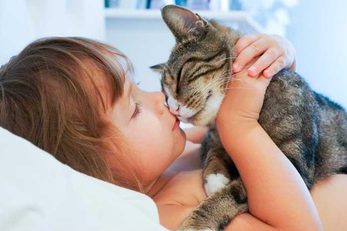 поцелуй с кошкой