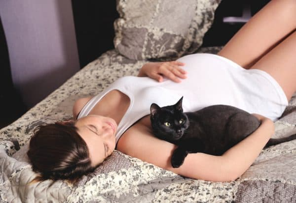 Почему беременным нельзя гладить кошек читайте статью