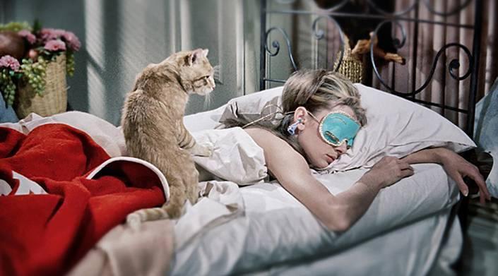 Почему кошки спят на месте или на вещах хозяина?