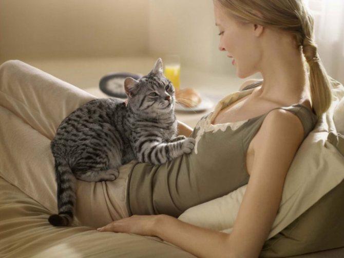 Почему нельзя спать с кошкой в одной кровати взрослым, детям, беременным?