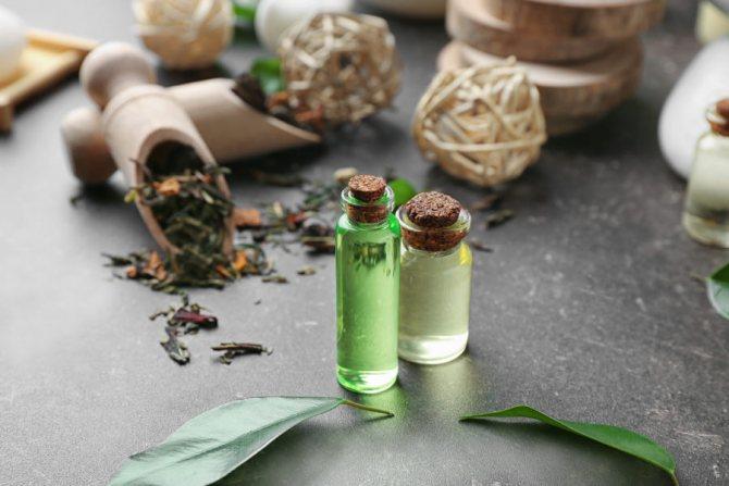 Почему стоит применять масло чайного дерева от вшей и гнид - все за и против