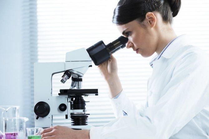 Под микроскопом можно точно установить вид чесоточного клеща и, следовательно, определить разновидность болезни