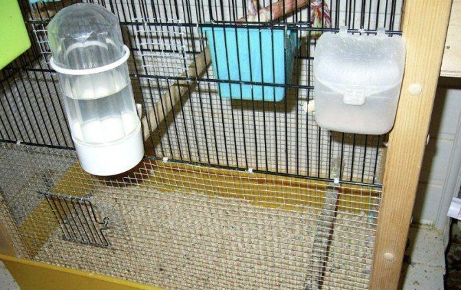 Подстилка для клетки попугая