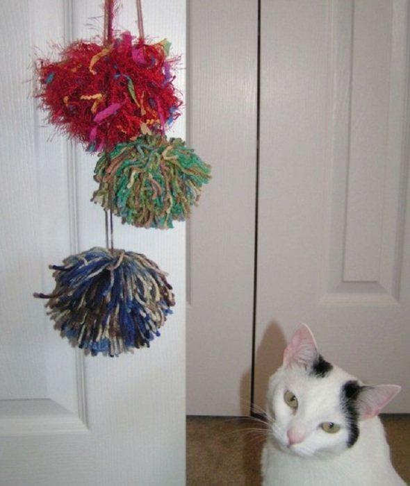 Помпоны на двери очень привлекают котов.