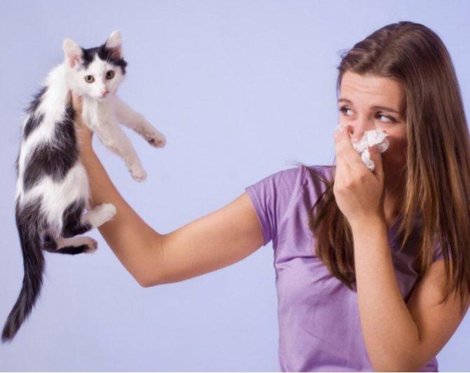 пот пахнет кошачьей мочой