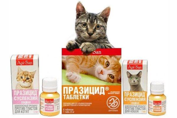 Празицид для кошек инструкция по применению